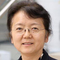 Q. Jane Wang