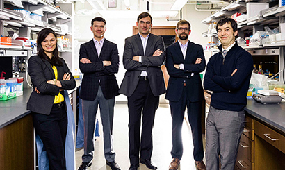 synthetic biology group